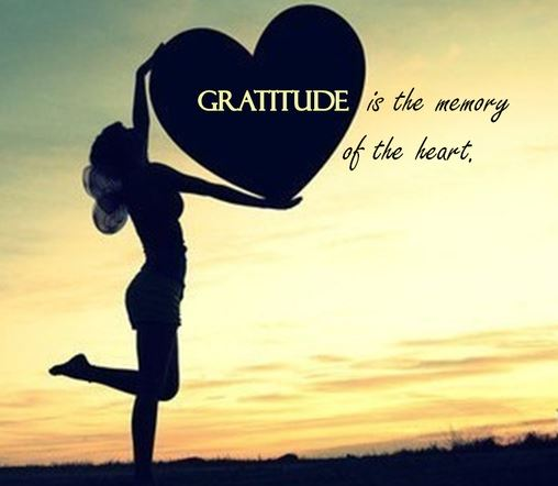 tlc-gratitude